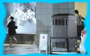 多部未華子と窪田正孝のフライデーの画像